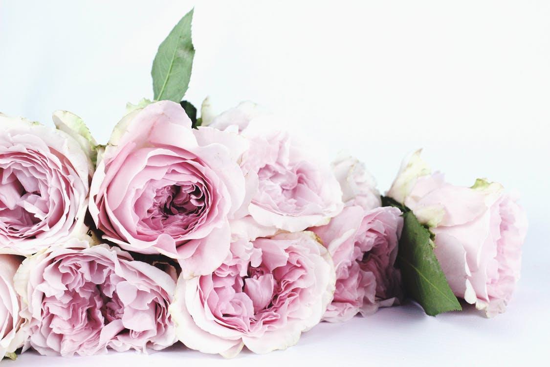 btw-op-bloemen.jpeg